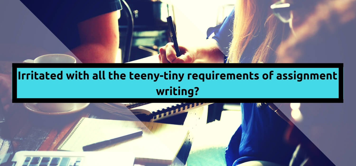 Irritated with all the teeny-tiny requirements of assignment writing?