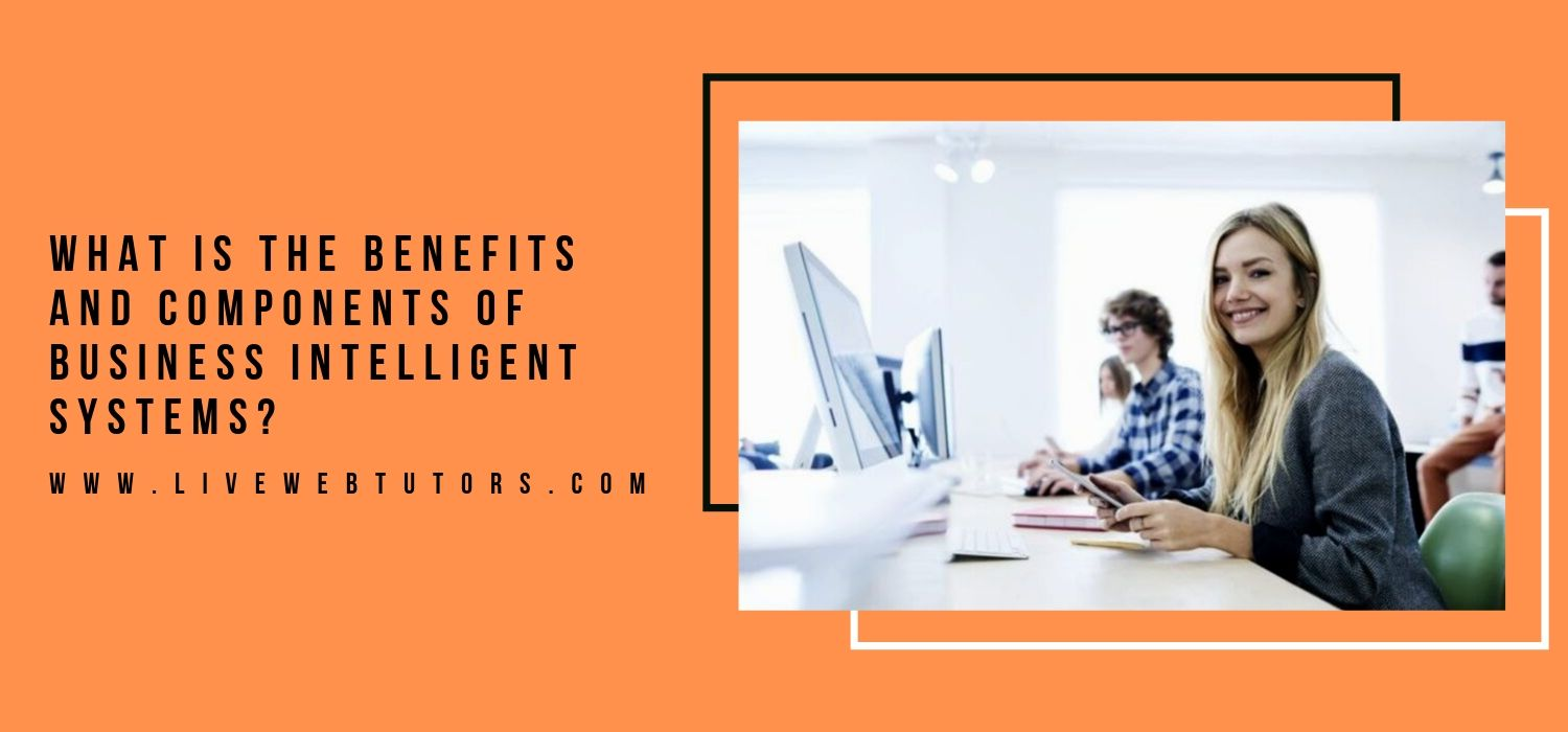 What is the Benefits and Components of Business Intelligent Systems?