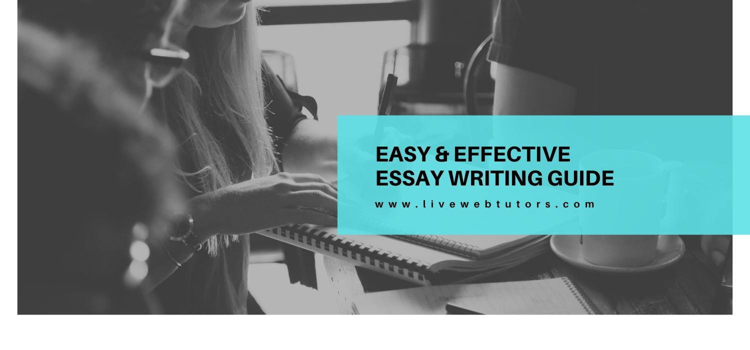 Easy & Effective Essay Writing Guide: For Scholars Who Hate Writing Essays