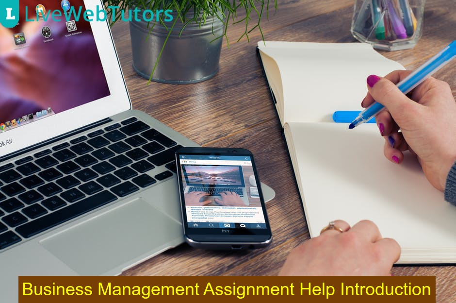 Business Management Assignment Help Introduction