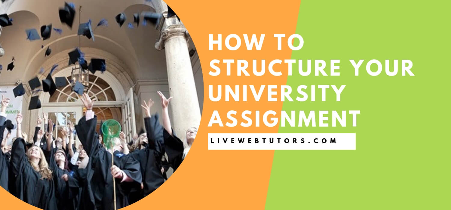 How to Structure Your University Assignment